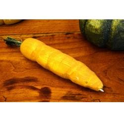 Carottes oranges stylo à billes