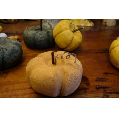 Potiron orange des lutins