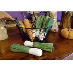 Poireaux vert stylo à billes