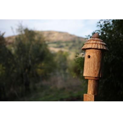 Nichoir pour oiseaux - Maison de lutins frêne-accès 27MM