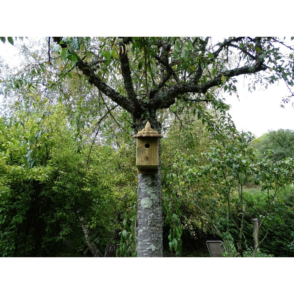 nichoir oiseaux boite oiseaux acc s 32 mm les. Black Bedroom Furniture Sets. Home Design Ideas